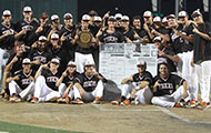 Twice as nice! Tigers repeat as Region VI Champs