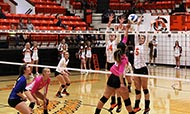 Volleyball continues to roll with win over Barton