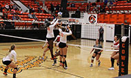 Tiger volleyball suffers rare home defeat