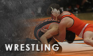 Tiger wrestling team places second at NJCAA West Central District Championship